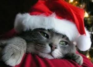 triste en navidad
