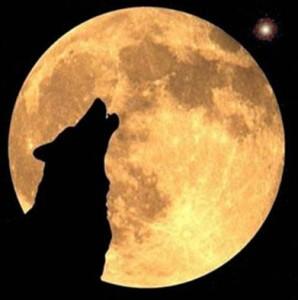 miedo al lobo